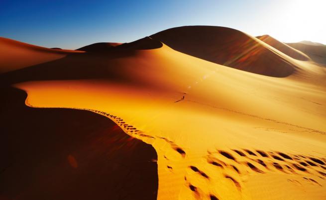 """""""Върви или умри"""": Мигранти прогонени в Сахара"""