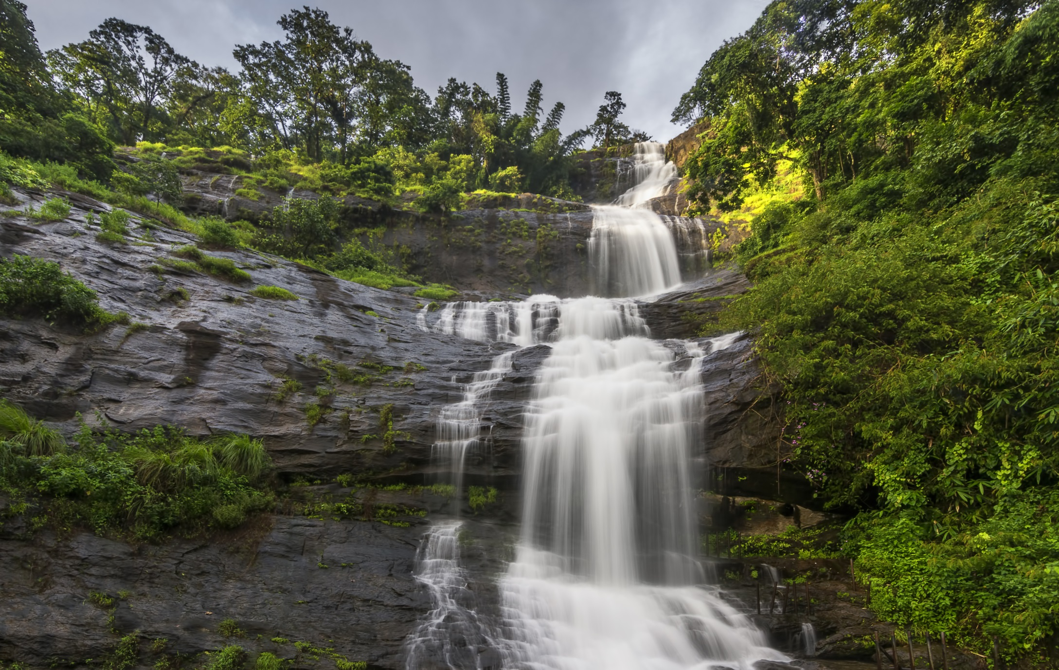 Западни Гхати, Индия<br /> <br /> Южните планини на Индия не са толкова популярни или високи, както хималайските височини в Северна Индия, но Тамил Наду, Керала, Карнатака, Гоа иМахаращра – тези необятни хълмове, защитени от ЮНЕСКО, са едно от най-популярните места за биоразнообразие в света. Там може да видите цвета neelakurinji, който цъфти само веднъж на 12 години и ще оцвети хълмовете в лилаво от август до октомври 2018 г. Посетете мястото сега и ще откриете плантации за кафе, чай и подправки, красиви водопади и парна железопътна линия, а в същото време ще избегнете тълпите в северните планини.