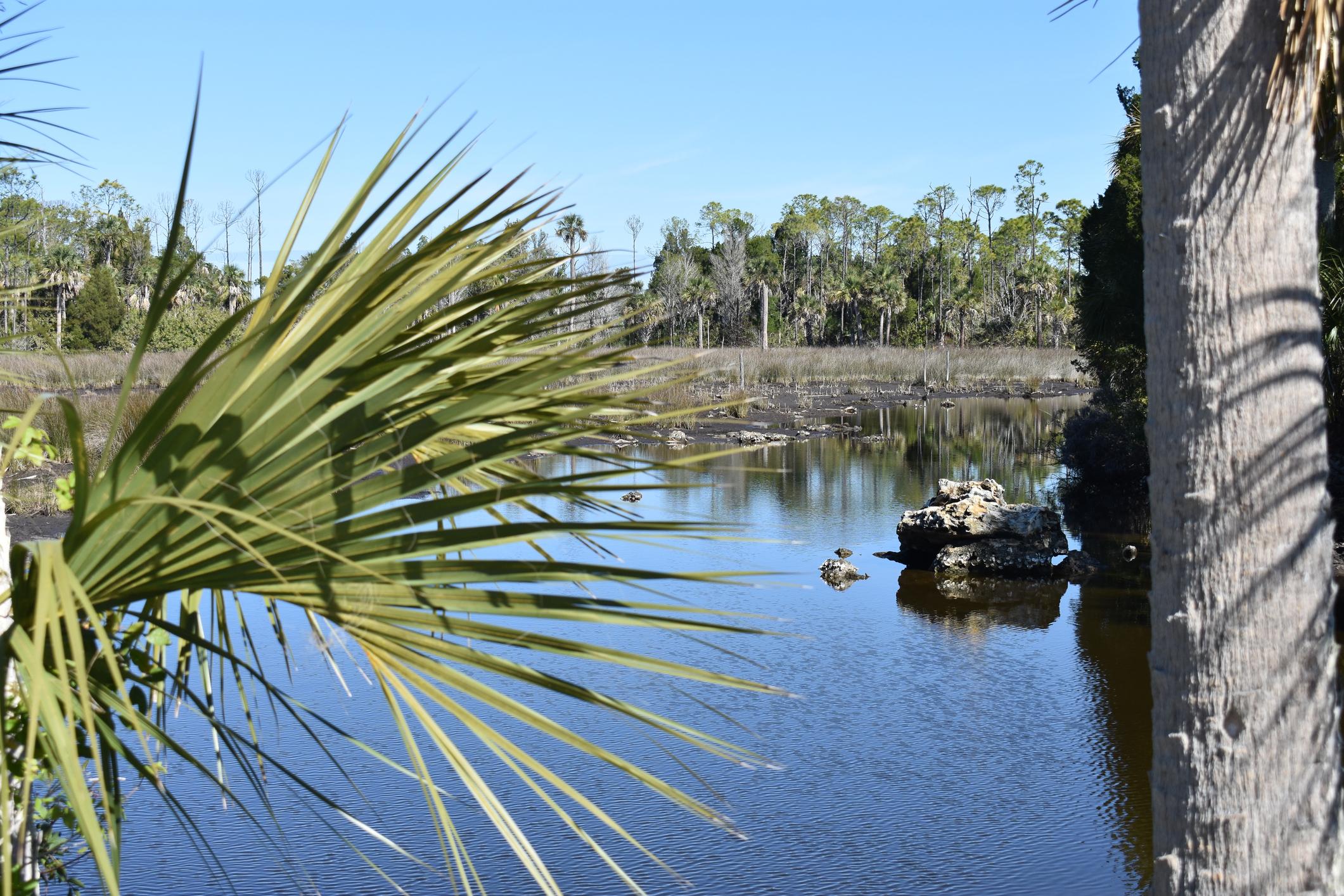 Уики Уочи, Флорида - население 12 души. Държавният парк комбинира всичко, което обичате във Вълшебното кралство и Морски свят.