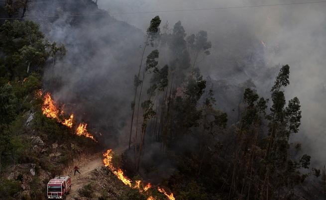 Огромен пожар в Португалия, огнена ивица раздели Испания и Франция