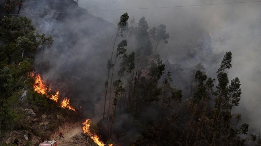 Пожар в Португалия, огнена ивица раздели Испания и Франция