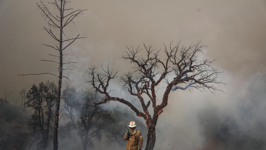 Свирепи пожари в Португалия и Испания