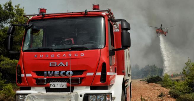 Пожарникарите в Гърция се борят с огнена стихия в района