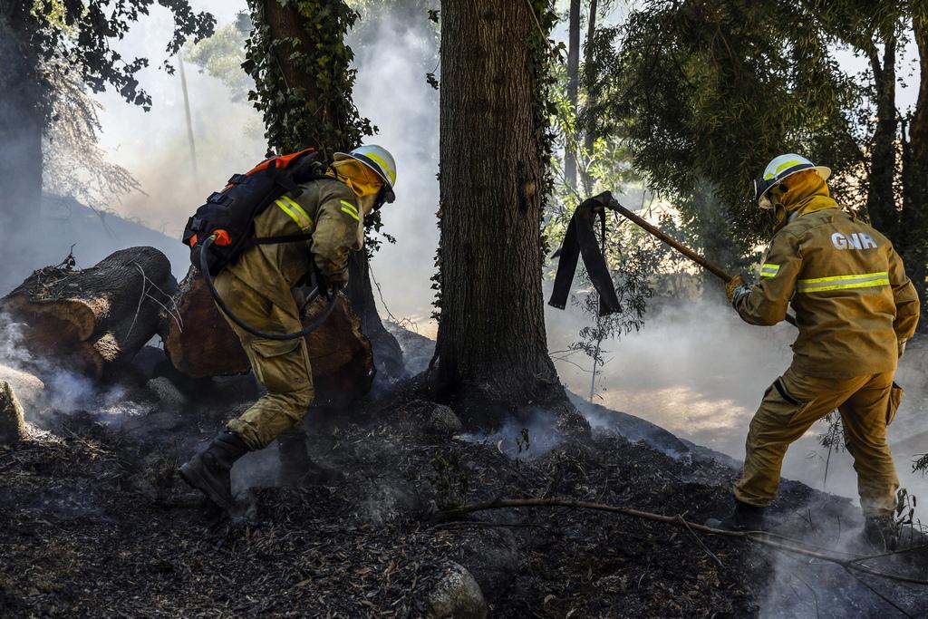 Огънят се приближи на 500 метра от Моншики, град с около 2 000 жители, което накара властите да евакуират къщите с оглед на приближаващата стихия.