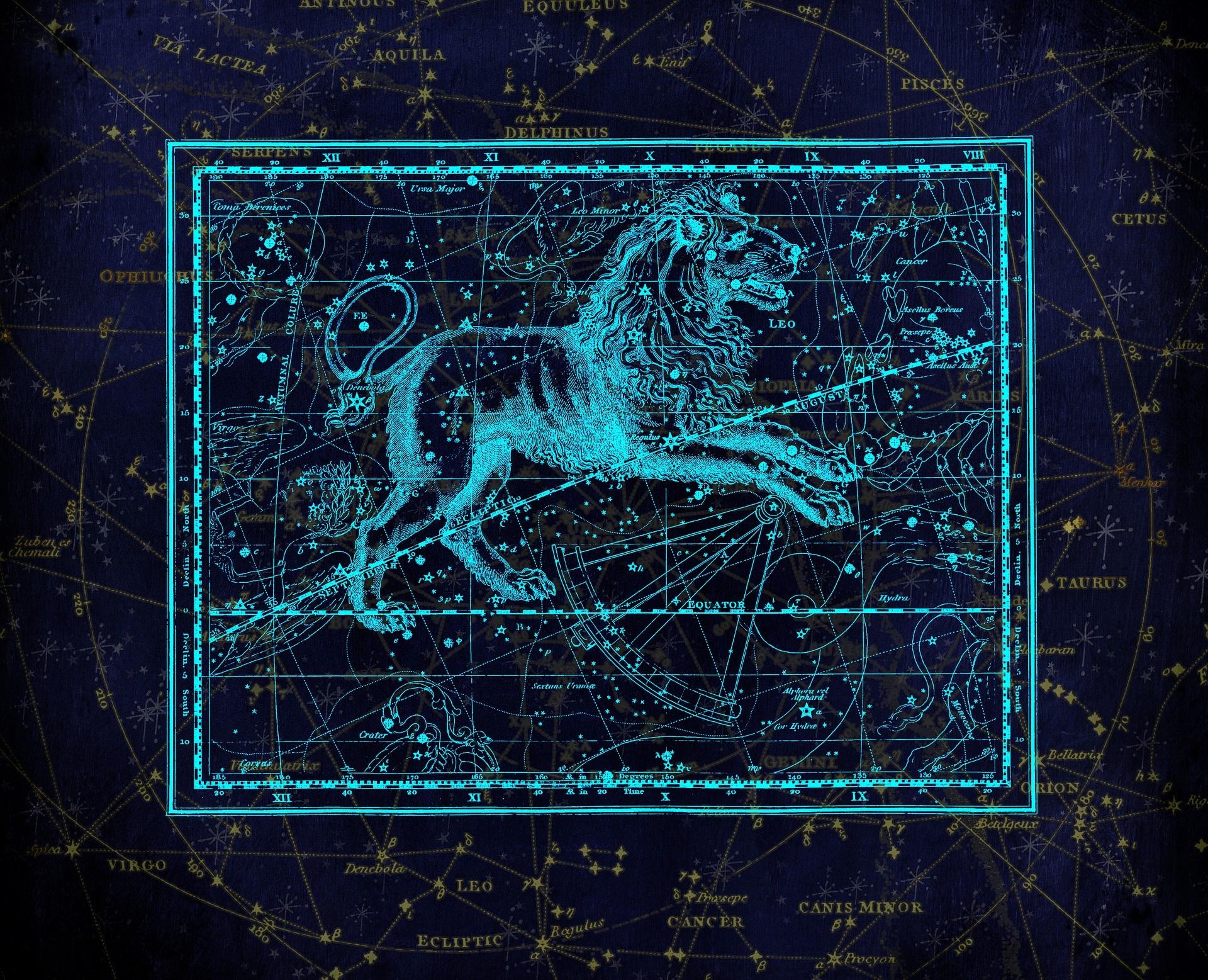 За зодия Лъв е важно да са обградени от атрактивни хора