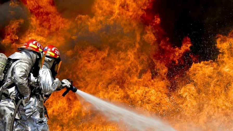 Деца предизвикаха пожар в Пловдивско, 50 овце изгоряха