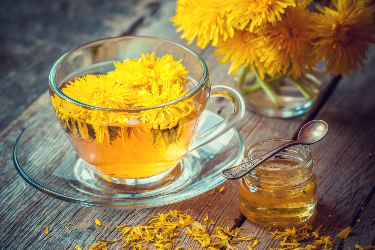 Чай от глухарчета - полезен е за черния дроб и панкреаса. Има силно детоксикиращо действие.