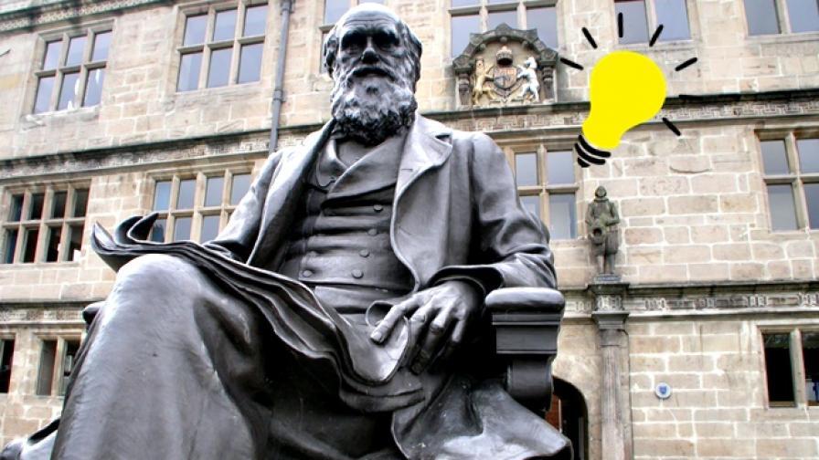 Дарвин ни учи как да бъдем продуктивни с по-малко труд