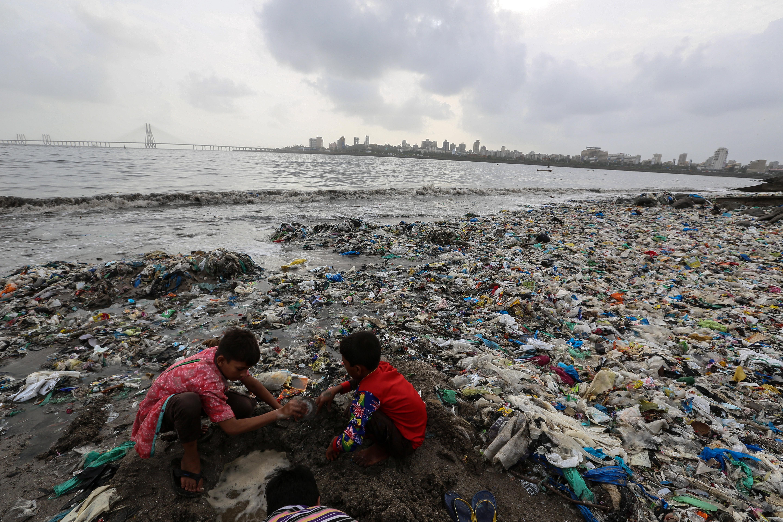 В тези камари от боклуци оцеляват само хората и плъховете, дори чайките избягват този плаж.