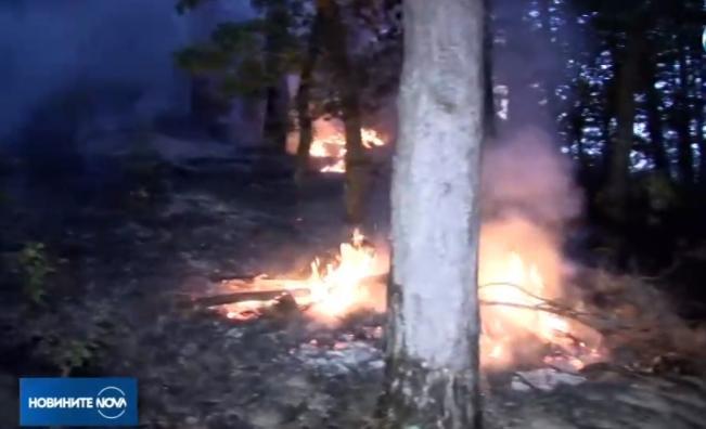 Пожарът в Благоевградско стигна близко село