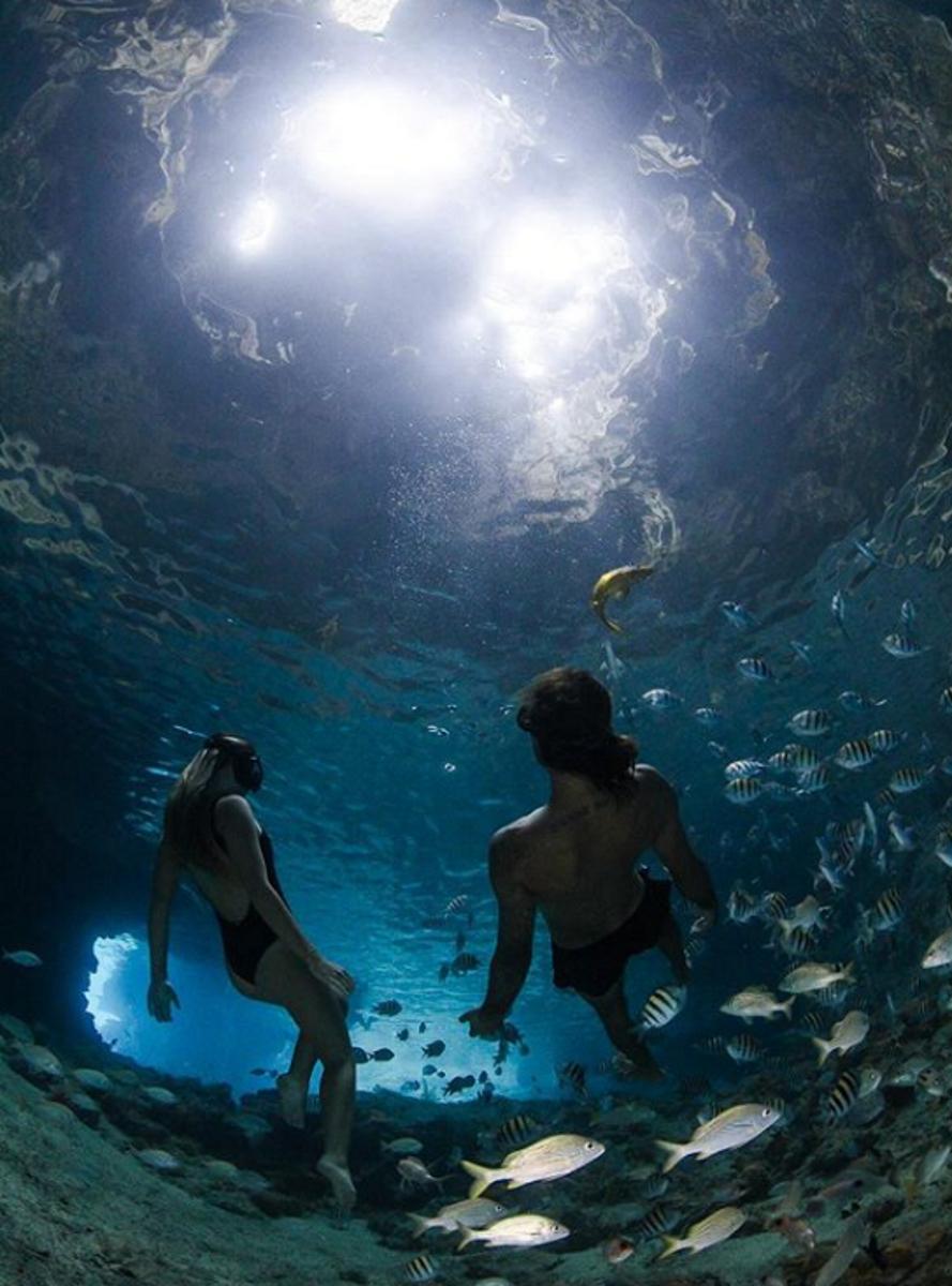 Фотографът Елена Кейлис и дъщеря й - Саша живеят заедно на малък остров на Бахамите. Те правят поредица подводни снимки, за да привлекат вниманието на хората към живота на подводните обитатели.