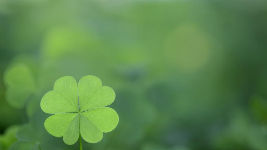 Историите на най-големите късметлии в света