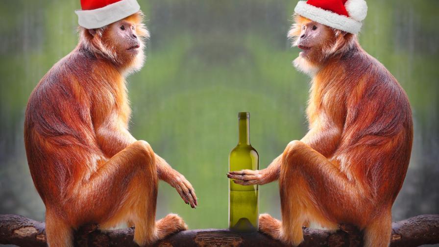 <p>Откъде идва любовта ни към алкохола</p>