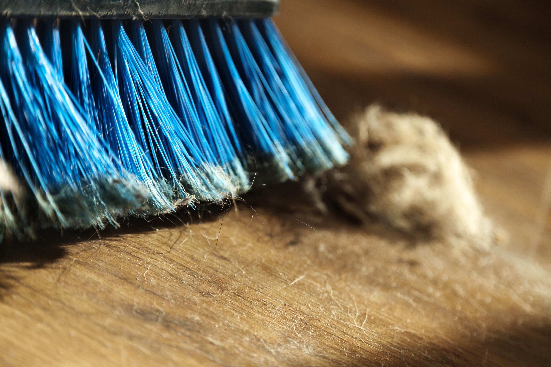 Подовете са мръсни. Идея: Бършете подовете два пъти в седмицата, а един път пускайте прахосмукачка. Така ще имате през цялата седмица чисти подове.