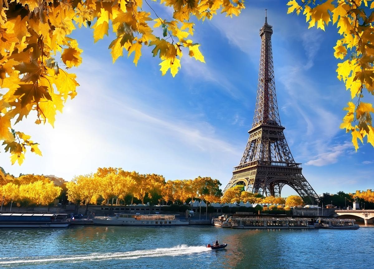Париж е един от пионерите в областта на градското развитие. Това е първият град, който измисля система за споделпне на велосипеди, така че да насърчи хората да слязат от автомобилите. Освен това, Париж има екосистема, разположена по продължение на целия град. Резултатът - намаляване на вредните емисии.