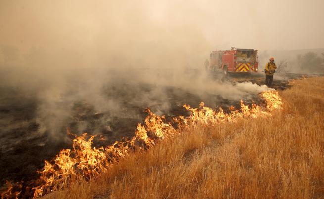 Над 20 загинали при пожарите в Калифорния
