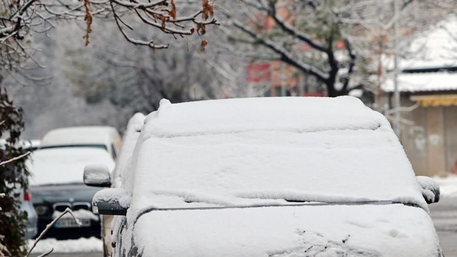 Как крадат коли през зимата - зачестяват случаите