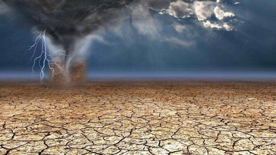 Защо дъждът носи смърт, а не живот в пустинята