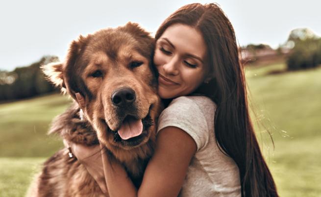 Кучетата наистина приличат на собствениците си