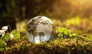 1/3 от всички животни и растения могат да изчезнат до 50 години