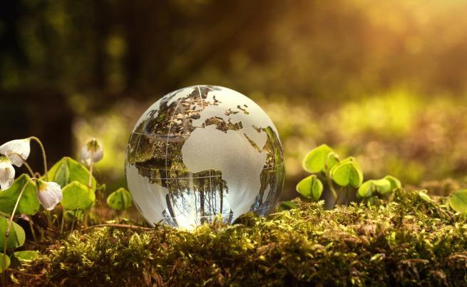 ООН: Да се готвим за масово измиране на видове