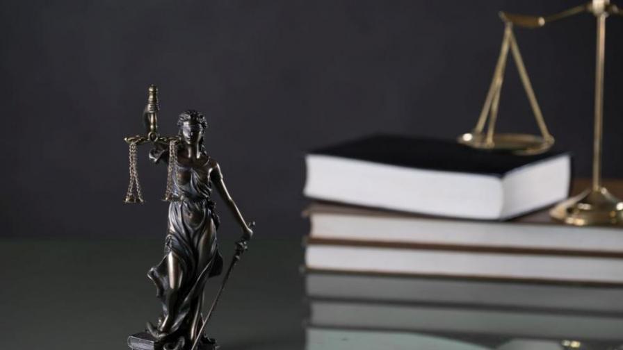 """Съдът отложи делото за """"Царските конюшни"""""""
