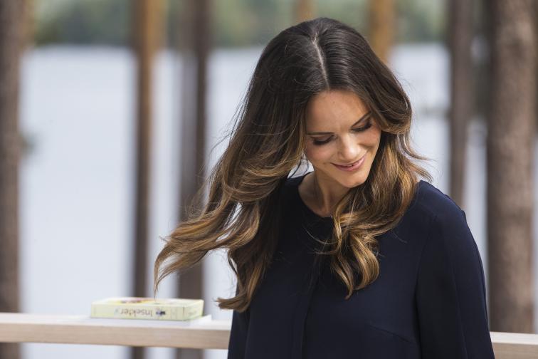 Шведската принцеса София навърши 34 години. По този повод от двореца публикува в социалните мрежи неин нов портрет. София стана част от кралското семейство през юни 2015 г., когато се омъжи за принц Карл Филип.