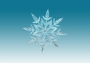 Днес празнуват хората със зимни имена