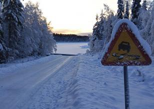 Съвети за безопасно пътуване на празниците