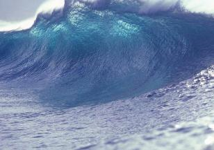 Опасност от цунами в Нова Зеландия