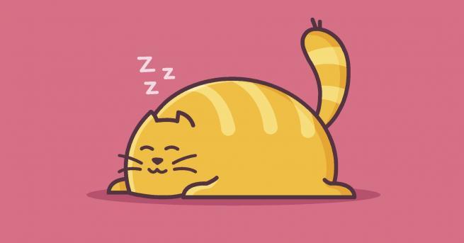 Снимка: Недостигът на сън увеличава риска от сърдечносъдови болести
