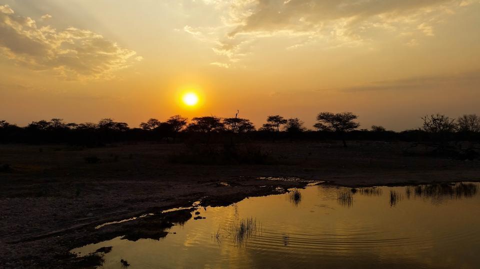 африка савана