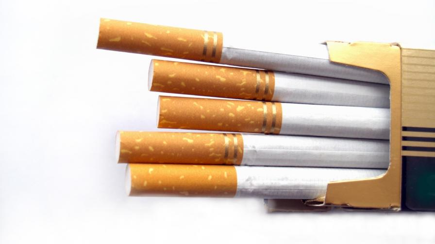 <p>Борисов край Пловдив, разбиха огромна фабрика за нелегални цигари</p>