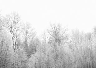 Снеговалежи в Румъния