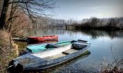 Световният фонд за опазване на дивата природа се грижи за река Дунав