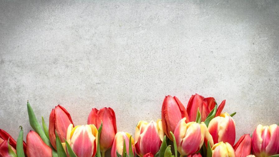 Цветанов с цветя за всички жени в НС, какво каза Ердоган
