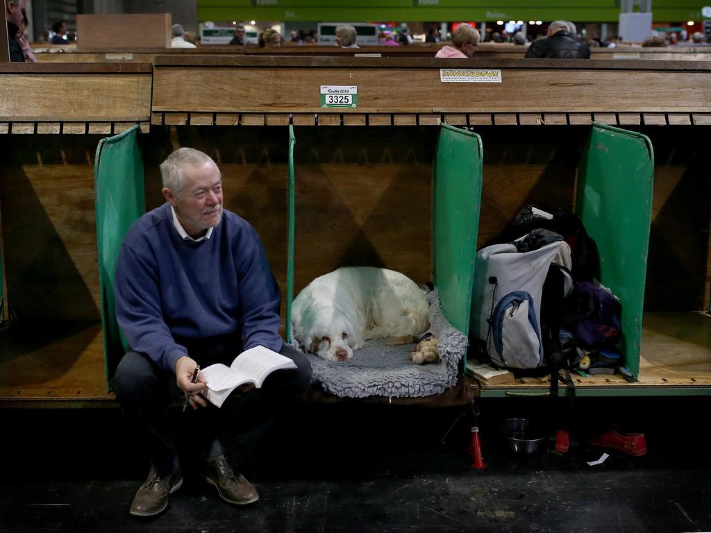 Пътувайки из цяла Великобритания и чужбина той разбира нуждите от по-високи стандарти в изложбите за кучета.