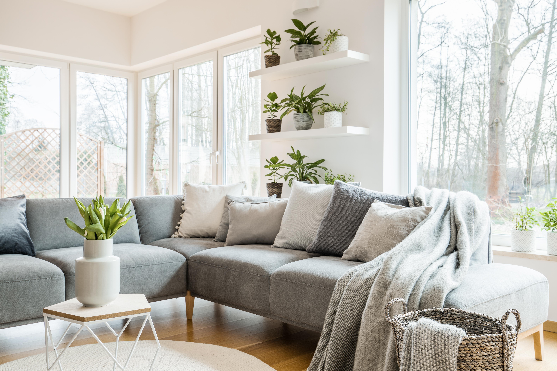 Проучване на шведски мебелен гигант разкрива, че холът е най-голямата и най-често ползвана стая в домовете на германците. В него централно място заема меката мебел. Когато избират фотьойли и дивани, германците се съобразяват с обичайните за тях навици. Предпочитани са големите мултифункционални холни гарнитури, които могат да се свиват и разтягат. Освен тях, важен елемент от холното обзавеждане е и секцията.
