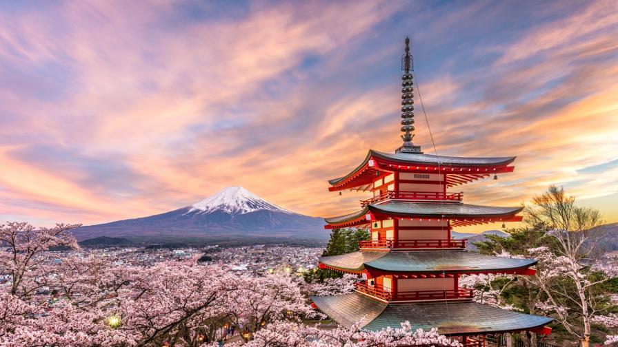 <p>Красотата на <strong>пролетта в Япония</strong></p>