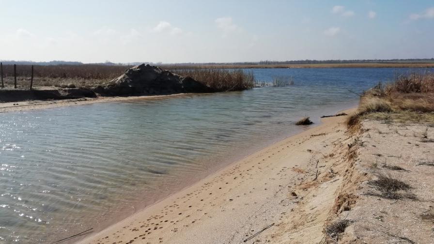 Драстичен спад с около метър на водното ниво на Шабленско и Езерецко езера установи екип на Българското дружество за защита на птиците (БДЗП)