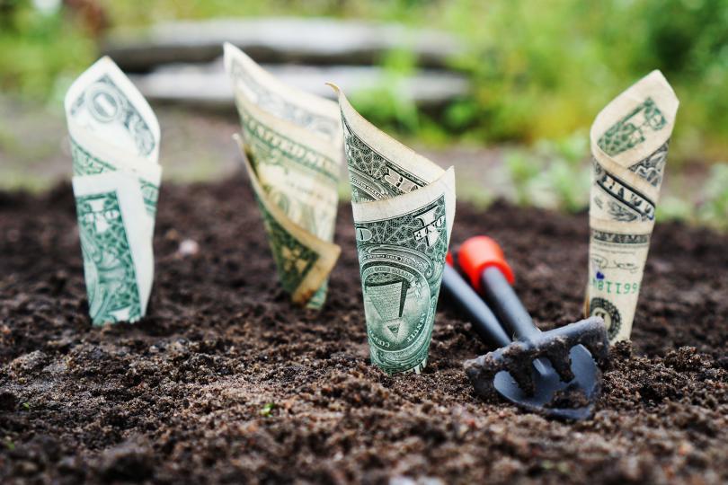 <p><strong>Правило номер едно: Парите не растат по дърветата</strong></p>  <p>Чували сме го много пъти като деца, нали? Банално, но и вярно. Децата трябва да знаят колко труд полагате, за да изкарате парите, с които се опитвате да ги направите най-щастливите малчугани &nbsp;на света.</p>