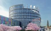 "Цените на храната станаха ""солени"" в eвропарламента"