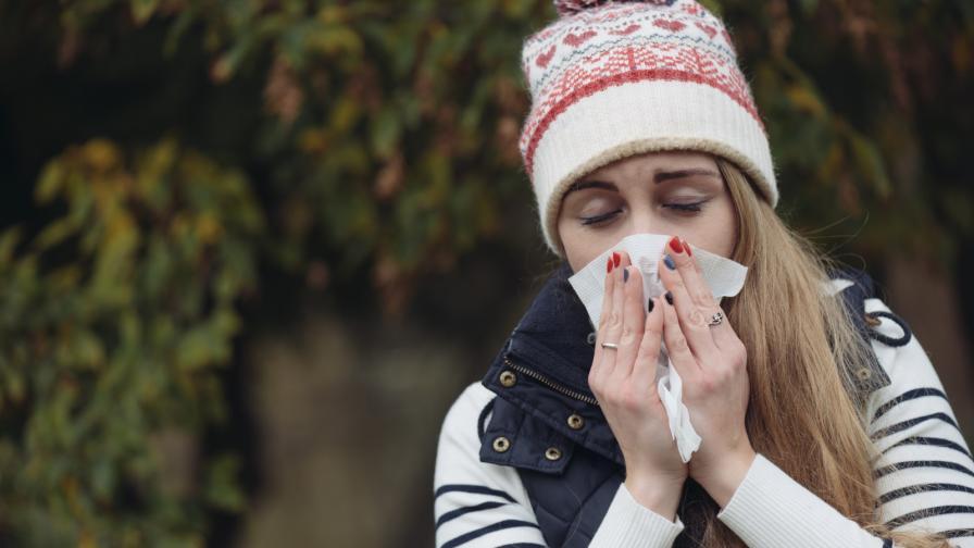 <p><strong>Природни лекове</strong> срещу пролетните алергии</p>