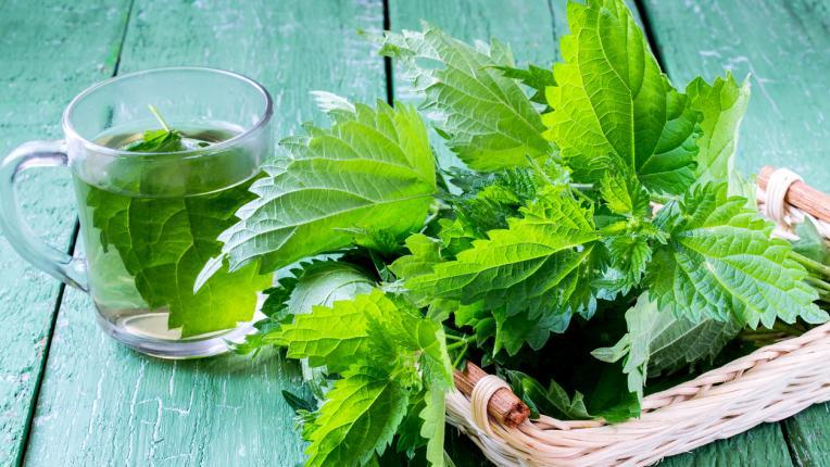 Природни лекове срещу пролетни алергии