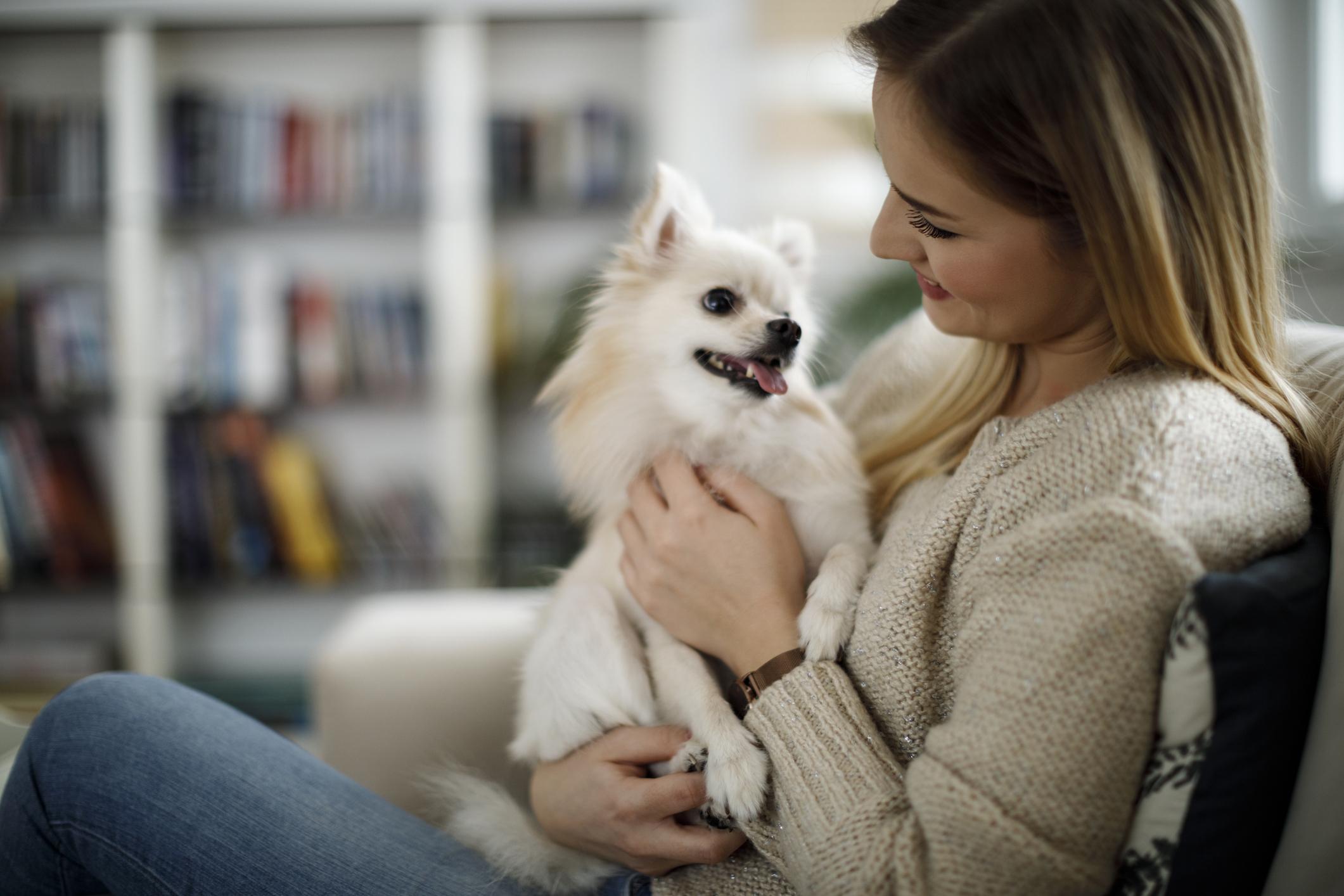 Гиардиазата се причинява от паразит, който можете да получите от вашите домашни любимци. Той живее в заразените фекалии на животни или хора. Може да се разпространи чрез контакт с всичко, което е било изложено на заразените отпадъци, включително вода, лед, почва и предмети от бита. Ако вашият домашен любимец има симптоми на диария или повръщане, трябва да се свържете с ветеринарен лекар, за да потвърдите диагнозата. При хората подобният на червей паразит може да причини тежко обезводняване. Симптомите като диария, гадене и болки в стомаха обикновено продължават между две и шест седмици и могат да започнат до три седмици след инфектирането. Подовете, мебелите, играчките и постелките трябва да бъдат напълно почистени след контакт с инфектиран домашен любимец.
