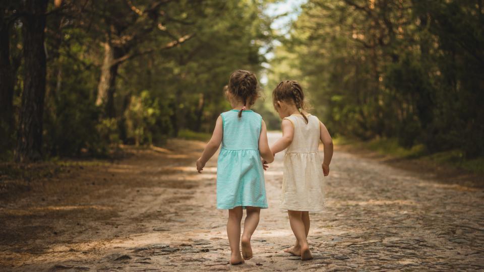 сестри приятелки