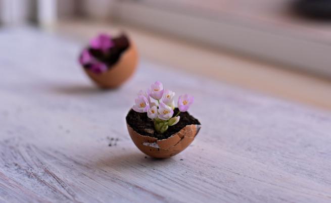 Страхотни идеи за великденска украса с черупки от яйца