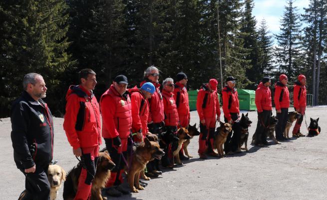 Героите в планината и не само - спасителните кучета