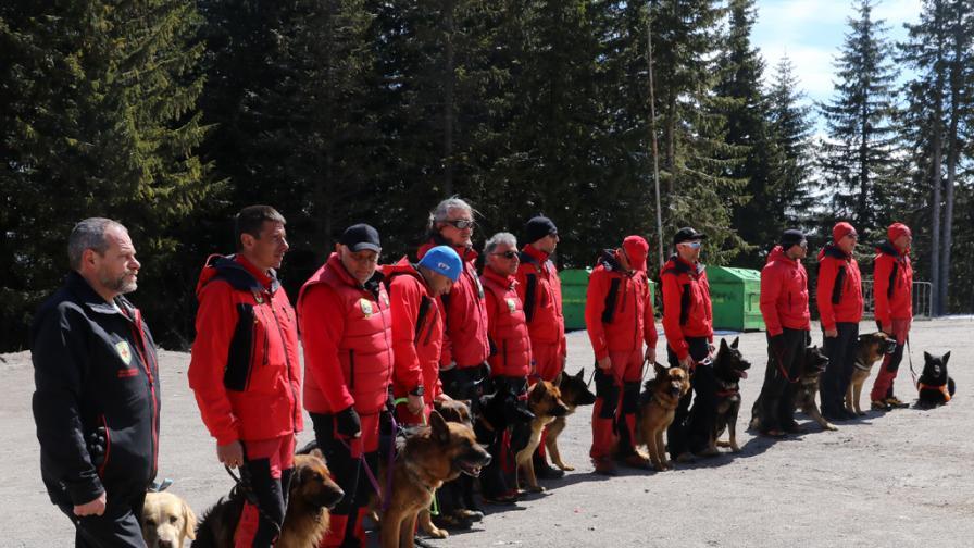 <p><strong>Героите</strong> в планината и не само - <strong>спасителните кучета</strong></p>