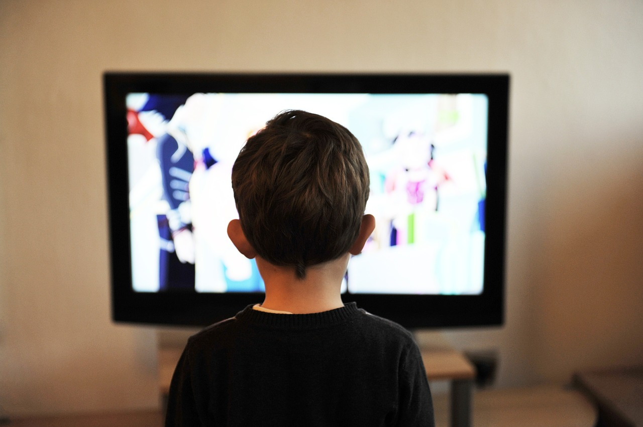 Гледане на чуждестранна телевизия - в Северна Корея на почит е само държавната телевизия. През 2013 г. 80 граждани са били публично разстреляни заради гледане на южнокорейски сериали. През 2014 г. - още 50. Сред убитите имало и 10 държавни служители.